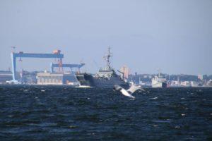 Kriegsschiffe Kieler Förde