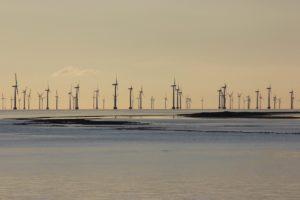Windräder in der Ostsee bei Gedser in Dänemark